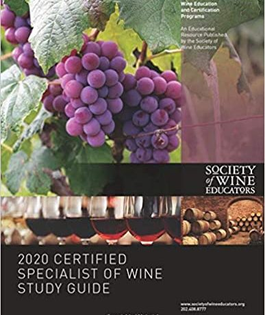 Product Image: CSW Study Guide 2020